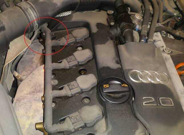 Burnt oil smell underneath the hood